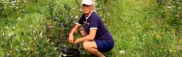image of personal trainer Laura Coleman demonstrating how to pick blueberries using a squat